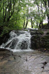 Dolina Bedkowska_jurajskie-wedrowki