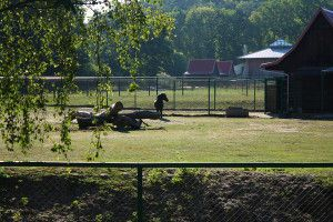 Zoo Oliwa_13