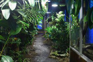 Zoo Oliwa_21