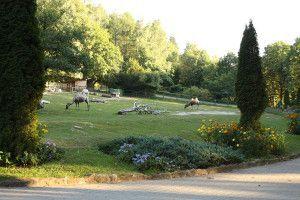 Zoo Oliwa_30