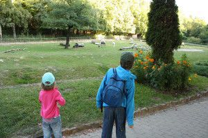 Zoo Oliwa_31