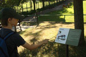 Zoo Oliwa_4