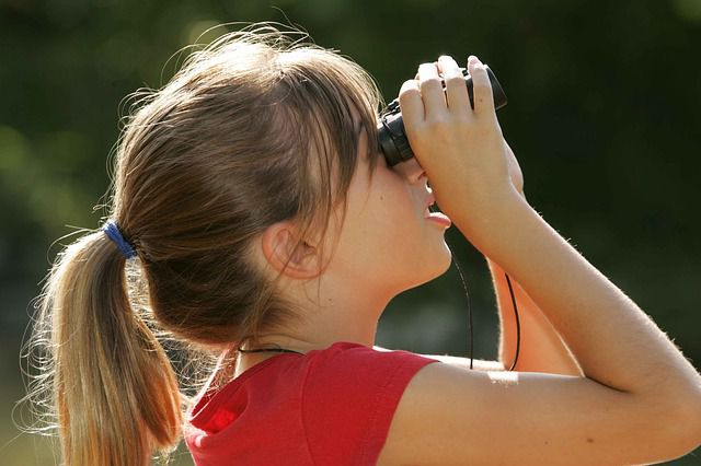 binoculars-387334_640